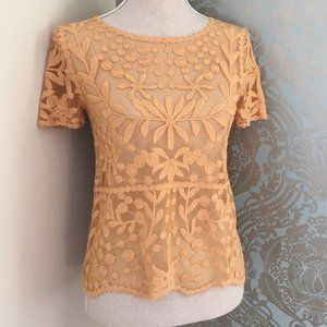 ZARA Collection Lace Sheer Top